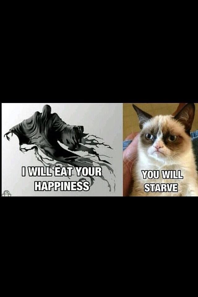 28 best Witty Stuff images on Pinterest   Funny stuff, Ha ...