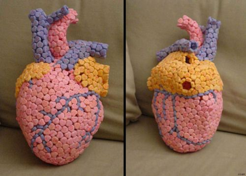 Heart Model Made From Candy Hearts D Anatomy Heart