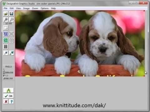 DesignaKnit 8 Graphics Studio Tutorial - Convert A Photo Into A Stitch Pattern