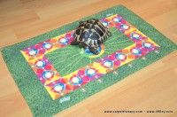 CARPETTHERAPY-KITY http://www.49lley.com/p/189/carpettherapy-kity