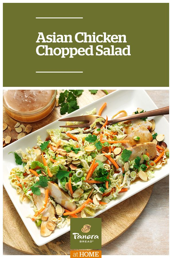 This Asian Chicken Chopped Salad features Panera® Asian Sesame Vinaigrette Dressing and hoisin sauce. Toss with grilled chicken and veggies for a bowl of crisp deliciousness.