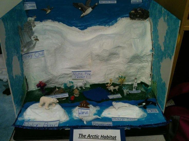 Arctic Habitat | School Project Ideas | FUN KID PROJECTS ...