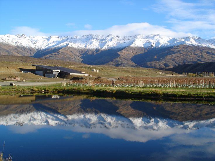 Amisfield Vineyard, Central Otago – New Zealand