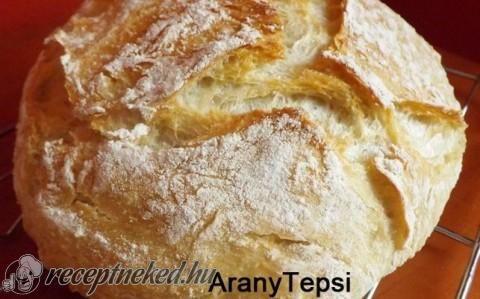 DNK, avagy dagasztás nélküli kenyér recept fotóval - Hozzávalók:      50 dkg kenyérliszt (BL80)     2 kk só     2 dkg friss élesztő     4 dl langyos víz