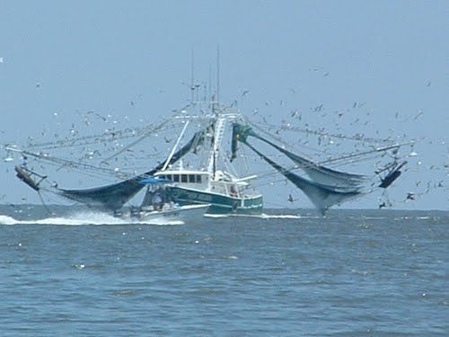 109 best images about pop 39 s water on pinterest panama for Nice fishing boats