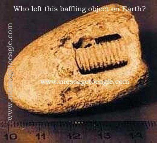 Screw found in stone on archaeological dig estimated to be 300-320 million years old.