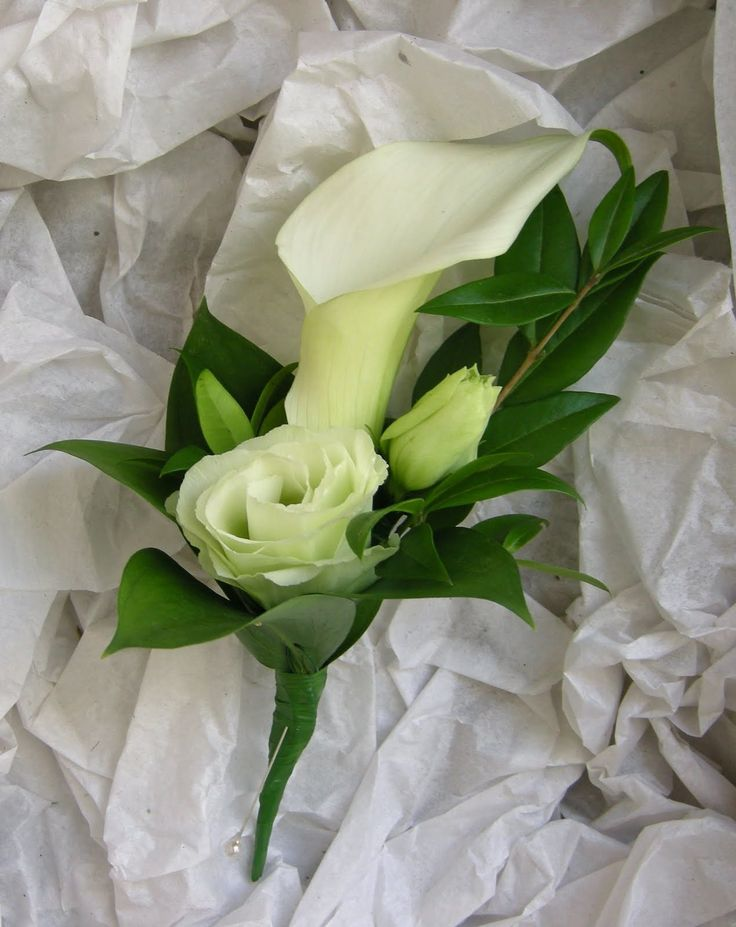 buttonhole-callalily-lisianthus.jpg (1270×1600)