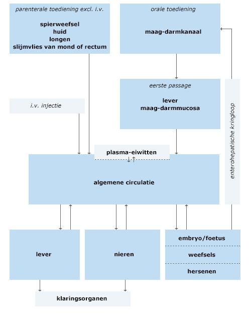 Kinderdoseringen (SANA 200668) | Cursus | CME-Online | apothekersassistent