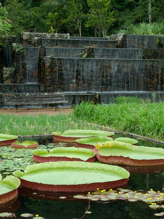 Gardens of Roberto Burle Marx Vargem Grande, Areias, Brazil