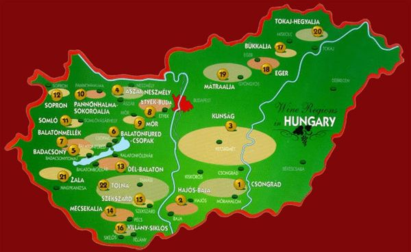 Hungary Wine Regions- wine tasting