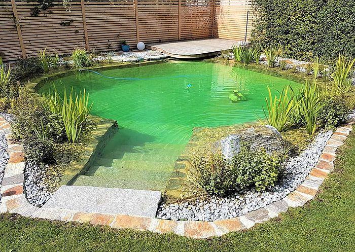 Kleiner Schwimmteich Mit Sonnenliege Naturschwimmbecken