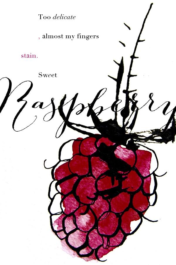 Clemmensen and Brok | Raspberry illustration, intense colour use.