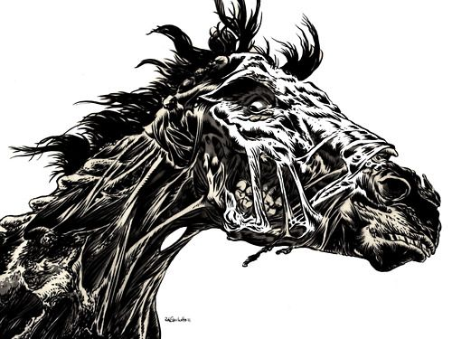 Zombie Face Line Drawing : 15 best zombie horses images on pinterest monsters zombies and