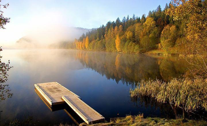 Morgenstimmung im herbstlichen Norwegen - wunderschönes Bild! Foto: Erik Jørgensen Google+