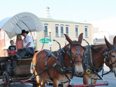 Wagon rides in Independence #Missouri are kid-pleasers! Relive the history of wagon trains heading west.