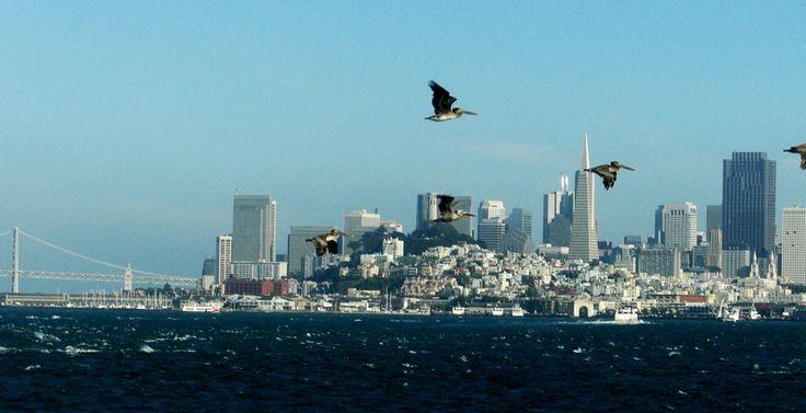San Francisco Skyline   san francisco Skyline