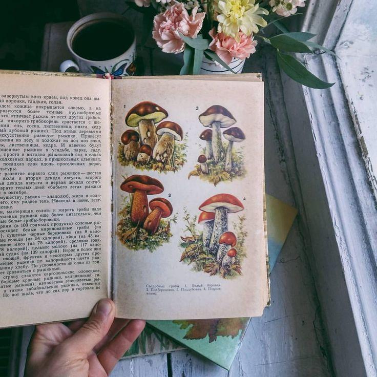 Embroidery в Instagram: «Не ищите в книжных Питера книги о ...