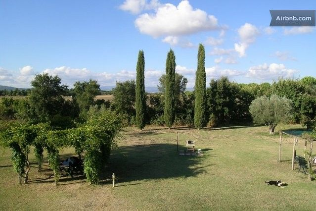 5 Farmhouse apartments & pool & sea in Castiglione della Pescaia