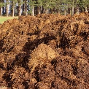 Five Types Of Manure For Your Permaculture Garden