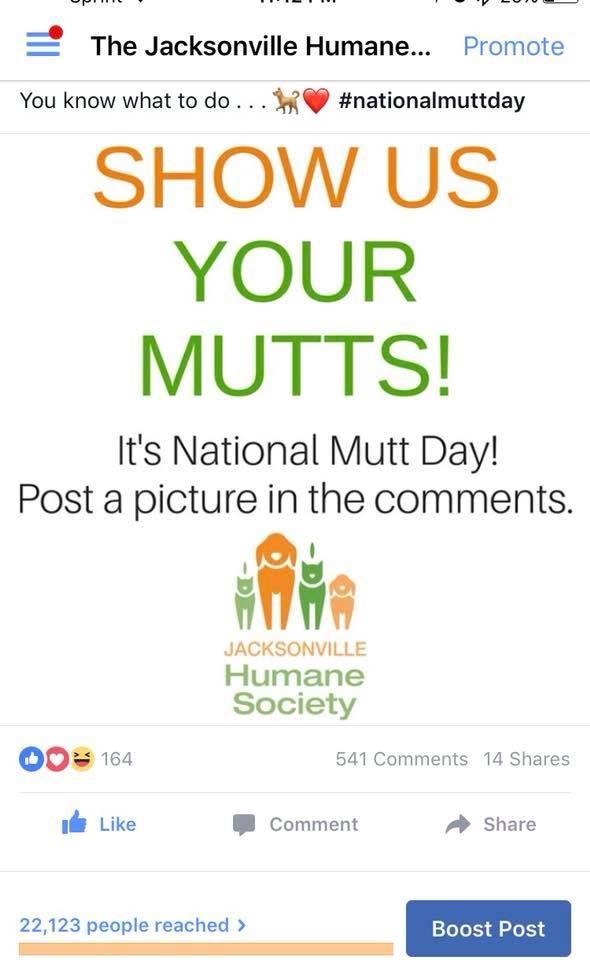 Social Media Gold From Jacksonville Humane Society National Mutt