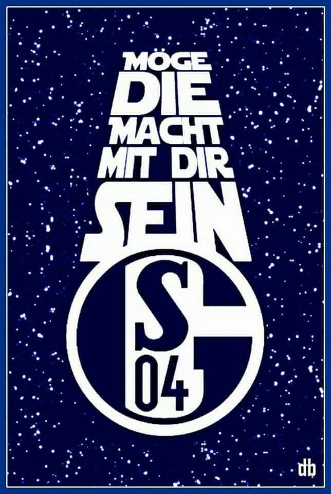 Pin Auf Schalke04