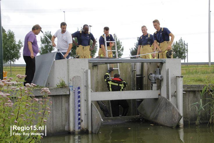 Brandweer redt 'pijltjes' uit gemaal in Bleiswijk - Regio15 - Het laatste nieuws uit de regio Haaglanden