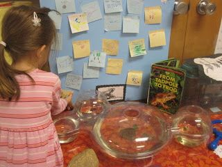 Inquiry-Based Learning: Writing in Kindergarten; a nice description of how writing, at all stages, is everywhere in a play-based kindergarten classroom.