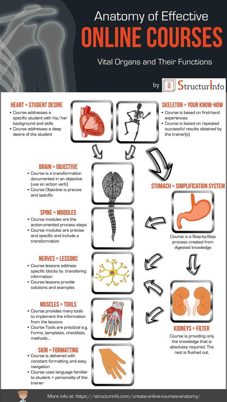 Teach Online Infographic ANATOMY of Effective Online