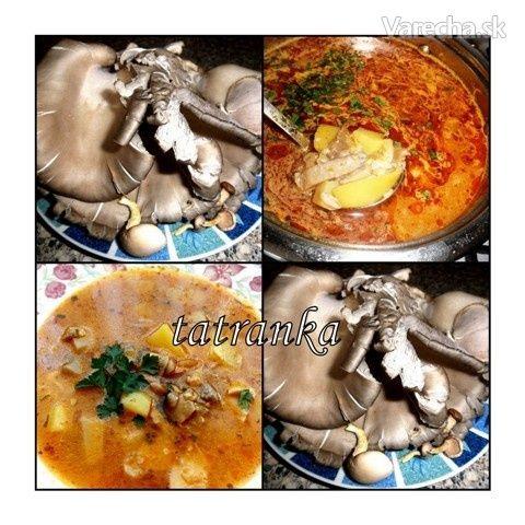 Držková polievka z hlivy ustricovej (fotorecept)