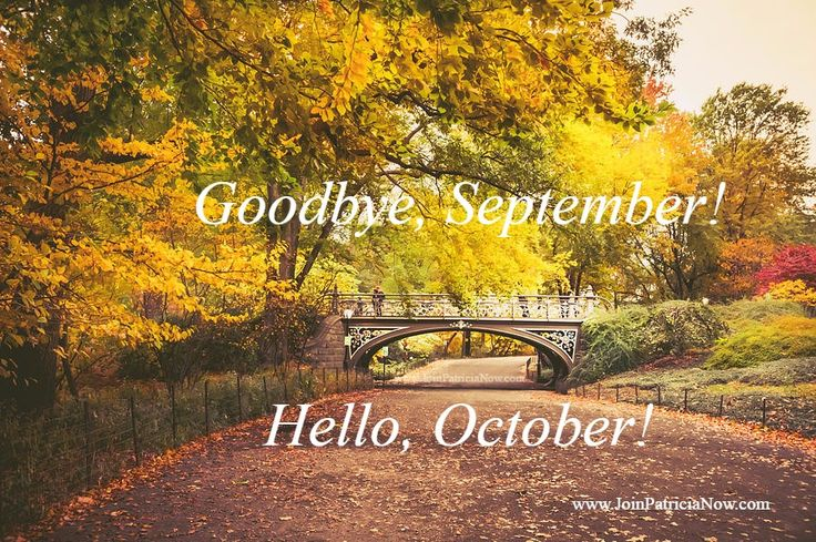Good Morning!    New Month... New Beginnings.... New Mindset.... New Focus.... New Results!