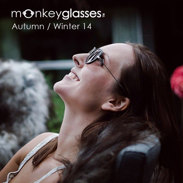 monkeyglasses / style hoda 33 / sunglasses / new collection / fashion eyewear