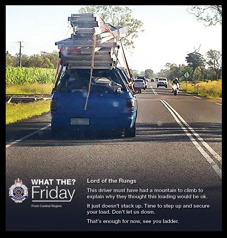 What The? Friday – Highlighting the bizarre things our officers see, like this Lord of the Rungs #WTFriday