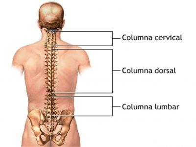 Columnaima