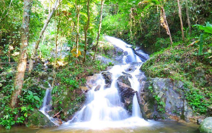 自然の中に紛れると落ち着く年頃になりました . . . #thailand #chiangmai #nature #green #trip #travel #waterfall #scenery #タイ #チェンマイ #旅 #色 #自然 #緑 #風景 #滝