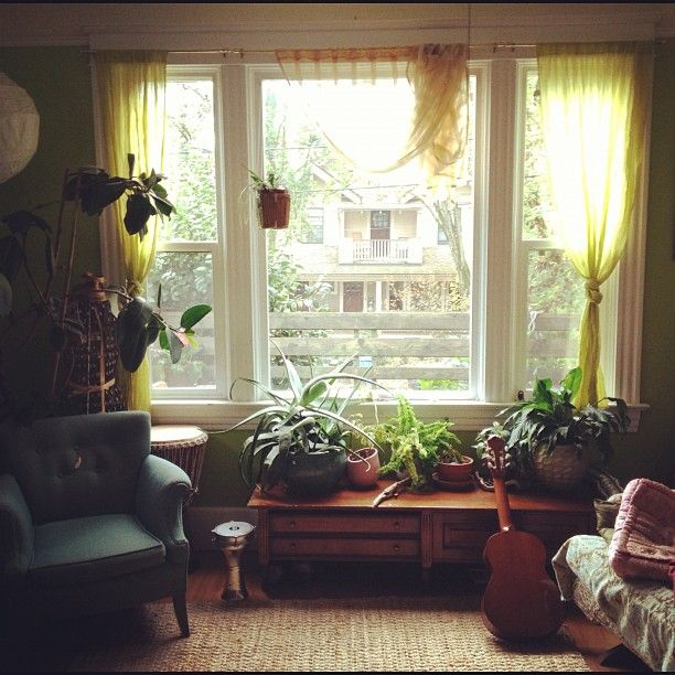 Cheap Bay Area Apartments: 55 Best Bay Window Plants Images On Pinterest