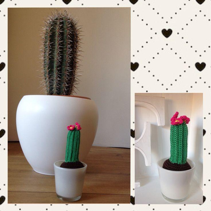 Crochet/haken cactus
