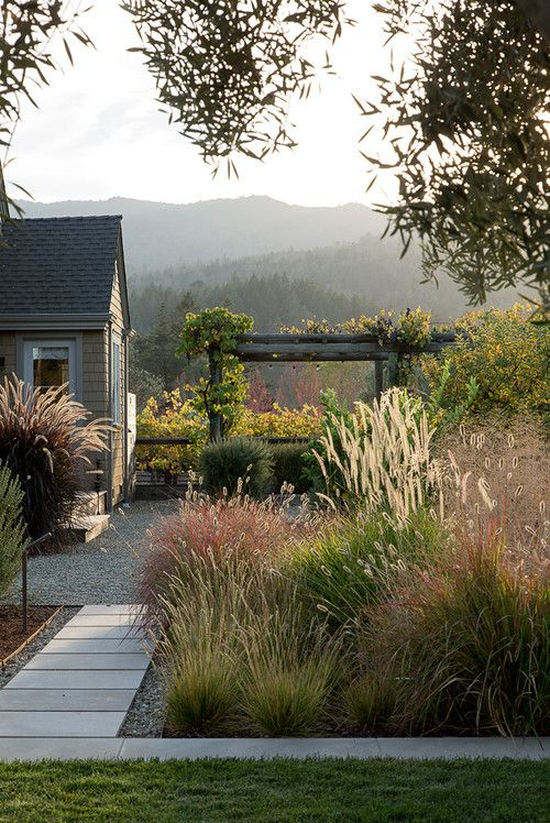 paver path / grasses / gravel