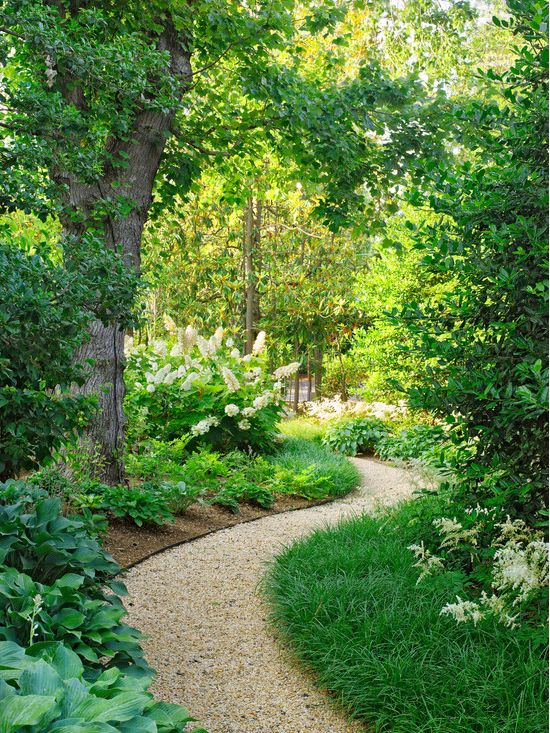 80 best New house ideas images on Pinterest Landscaping Gardens