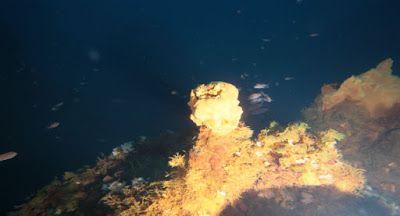 Il piacere di sapere che: Camini vulcanici fondali marini presso isola Panar...
