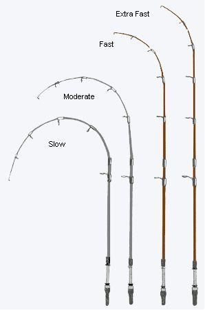 Tipos de acción de las cañas de pescar y sus aplicaciones
