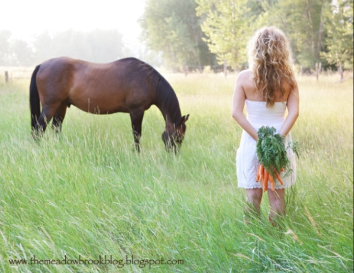 30 Best Maddy Senior Pics - Horse Images On Pinterest-8799