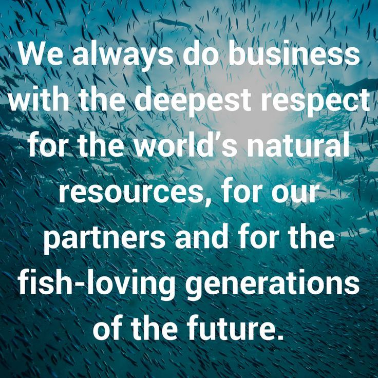 We always do business with the deepest respect for the world's natural resources, for our partners and for the fish-loving generations of the future. #sustainable #seafood #theblueway