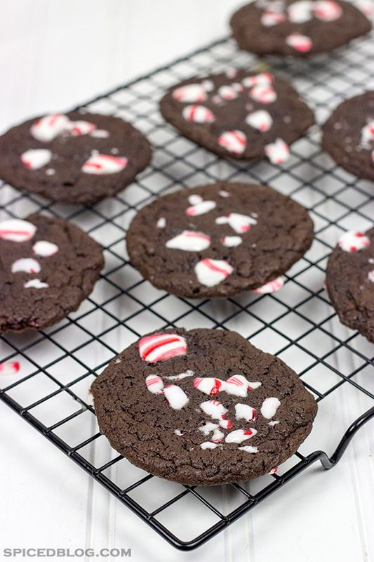 Double Chocolate Peppermint Cookies + Kahlúa Peppermint Hot Cocoa ...