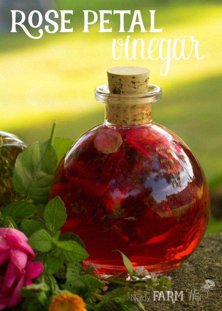 Beautiful Rose Petal Vinegar Recipe + 7 Ways to Use It