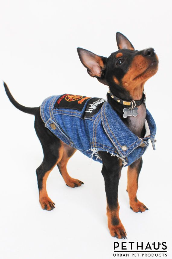 Vintage look denim dog vest with heavy metal patches by PetHaus, $75.00