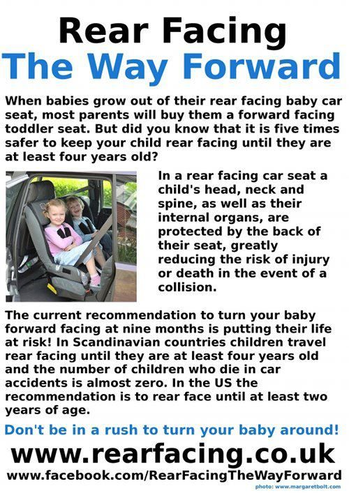 13 best ERF images on Pinterest | Car seat safety, Car seats and ...