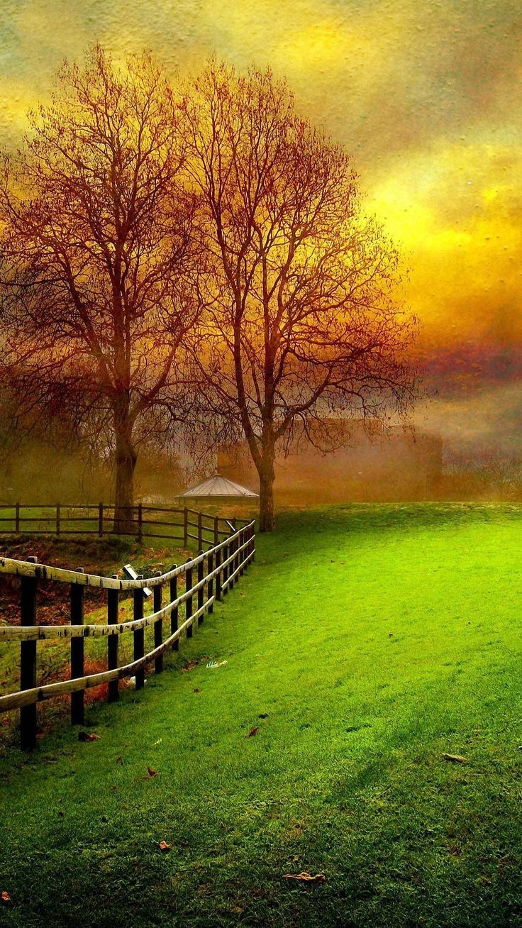 Nature Wallpaper For Android Download