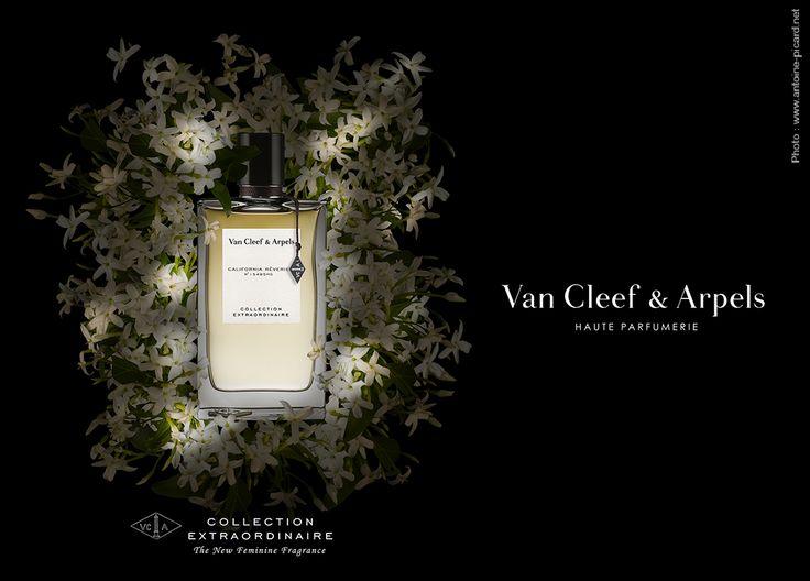 Photo: www.antoine-picard.net Flacon California Reverie Van Cleef & Arpels en clair-obscur