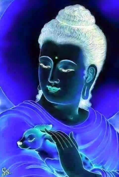 """You only lose what you cling to."" ― Gautama Buddha"