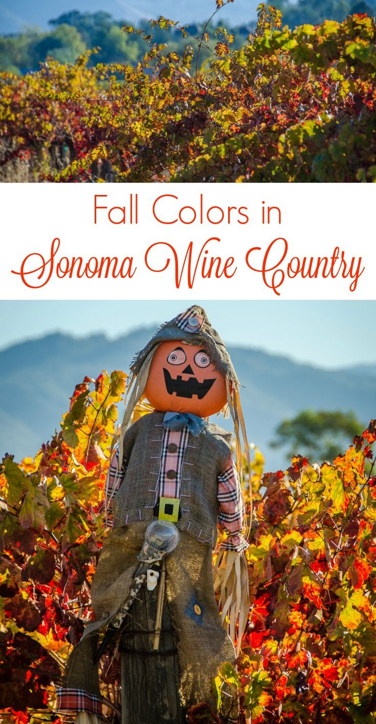 50 best best places to visit in usa images on pinterest for Best time to visit wine country